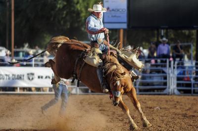brawley cattle call 2020