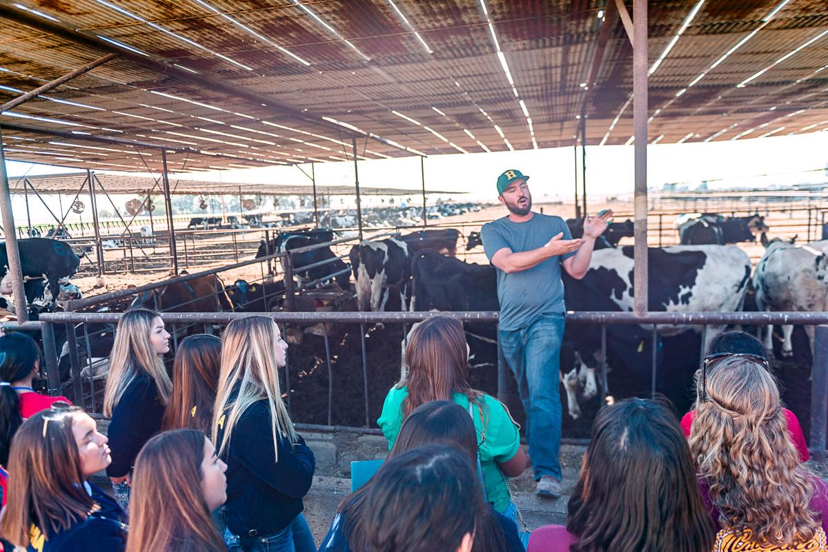 Youth Ag Summit showcases Holtville
