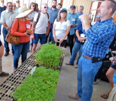 Community members tour hemp facilities