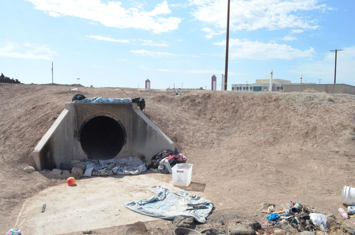 No inhabitants found in collapsed drain pipe