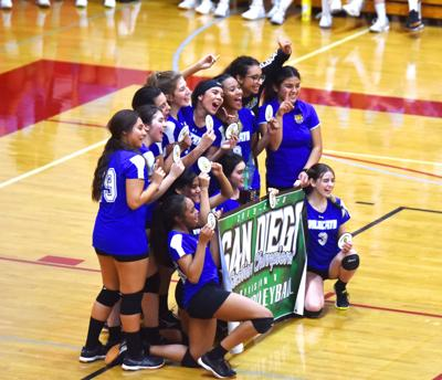 West Shores Wildcats take D-V volleyball title