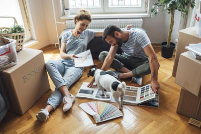 PAWS AND PAGES: Patience for new pets