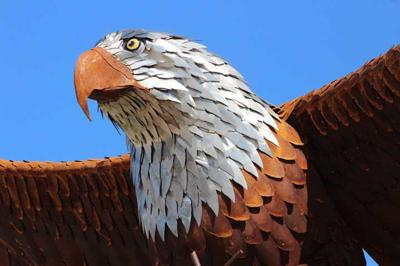 Eagle statue now soars over downtown