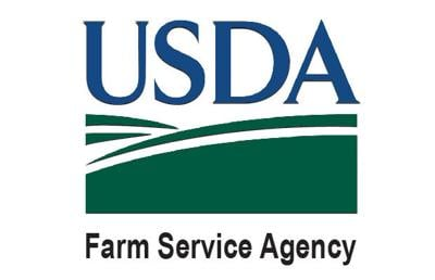 Farm Service Agency offers help to farmers affected by this week's heavy rains