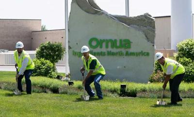 Ornua plans $10M plant expansion