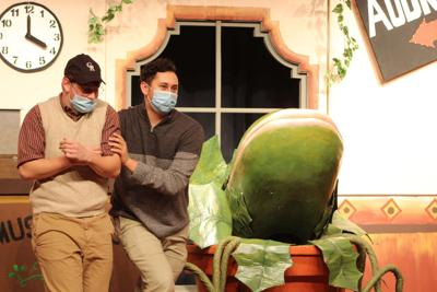 """Stop inside the """"Little Shop of Horrors"""" in New Holstein"""