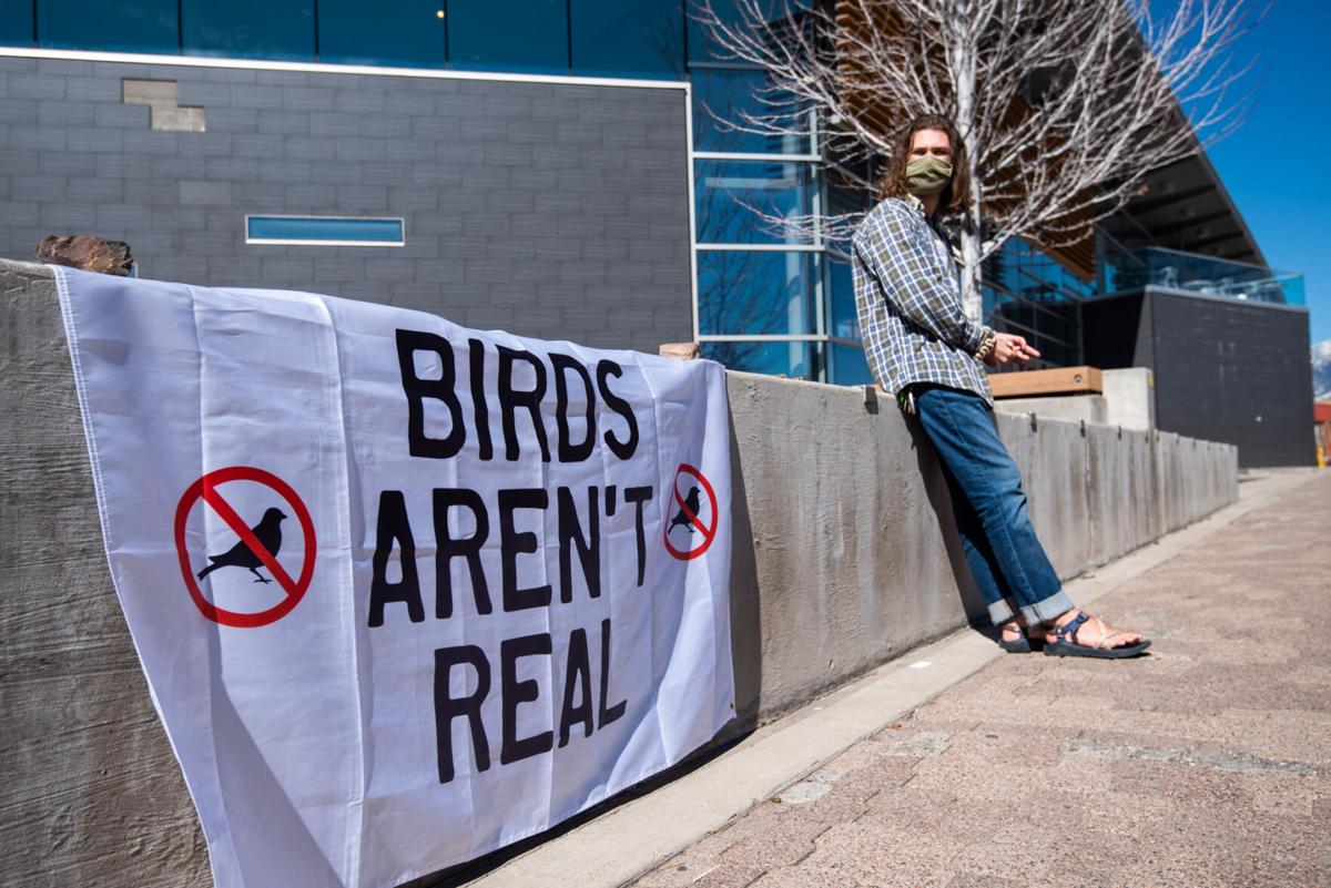 NAU Birds Aren't Real club insists birds are simply government drones