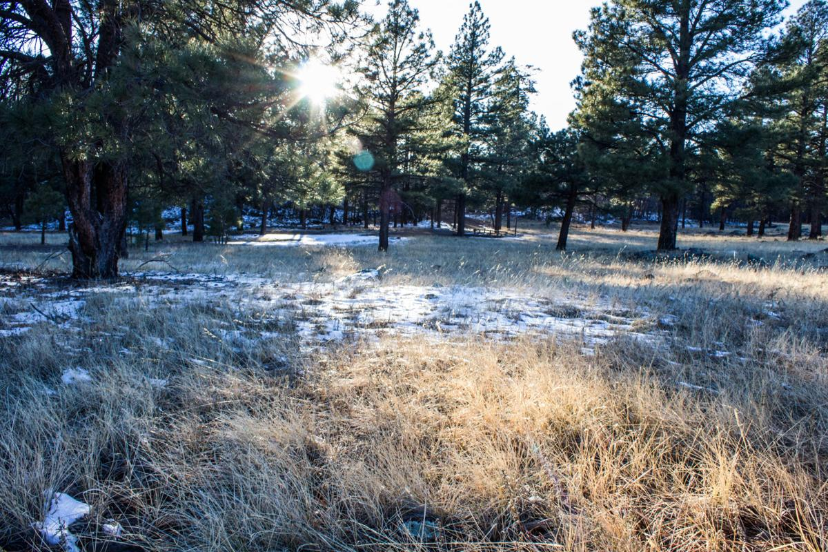 Years of preparation for a dry winter and early fire season