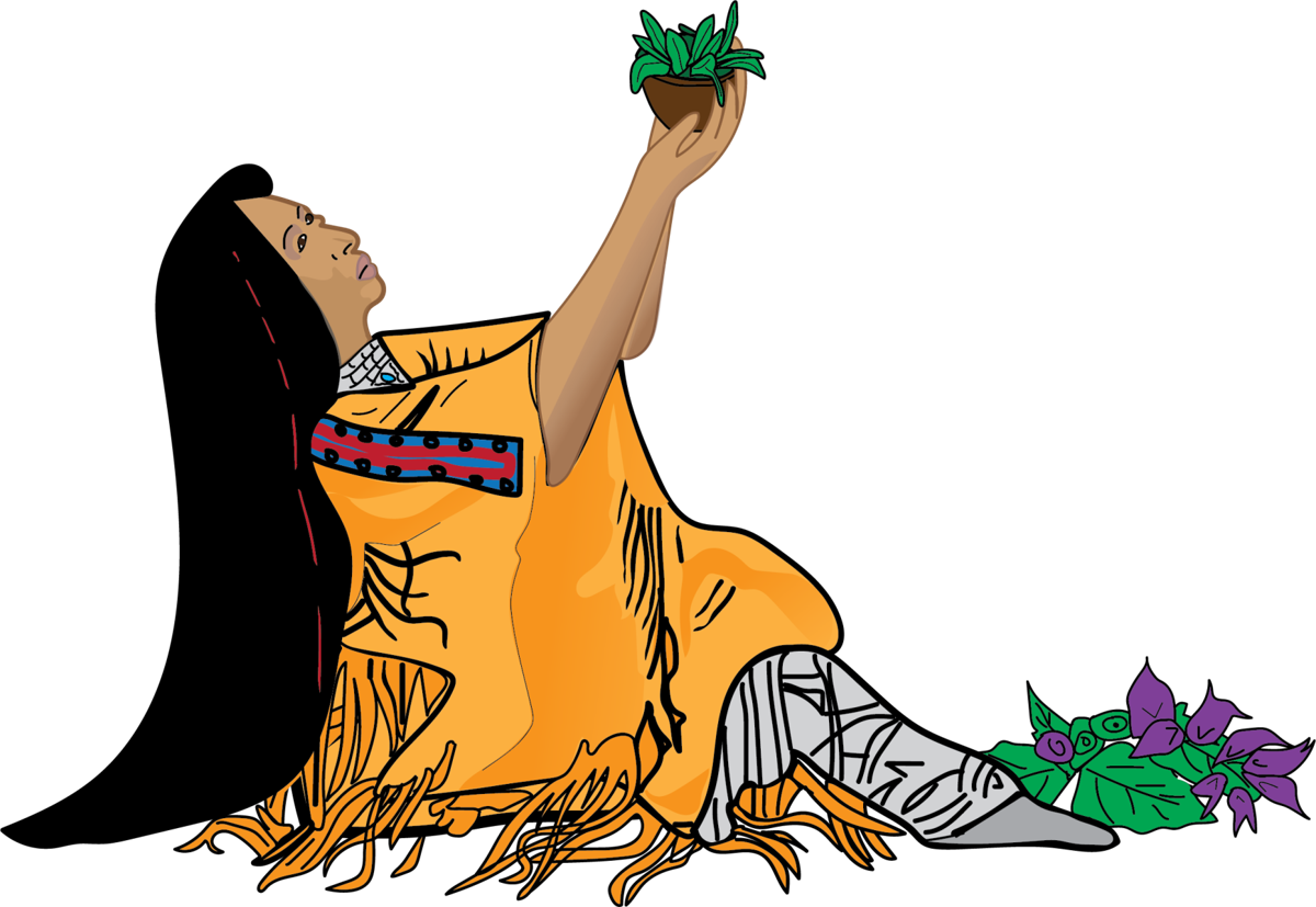 The plant people: A way of life for Native Americans