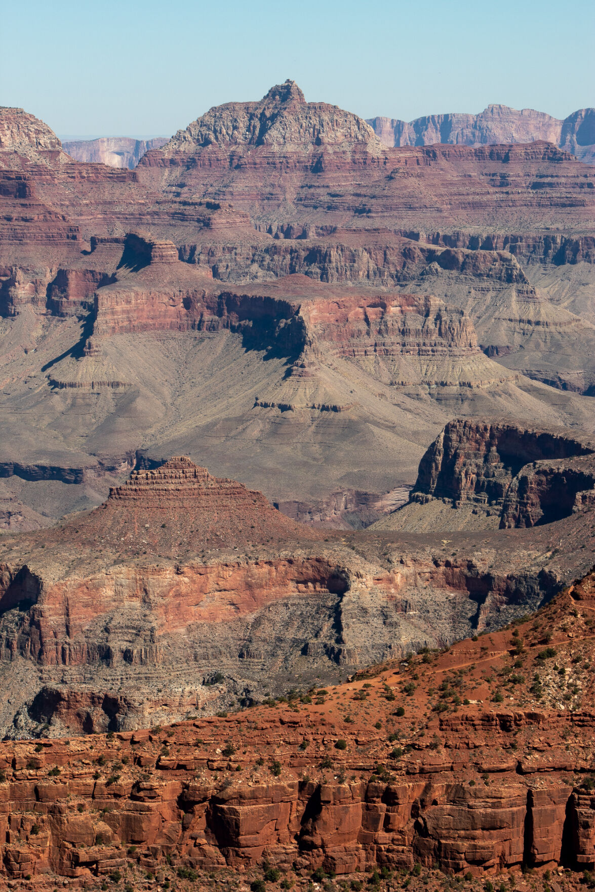 Grand Canyon Trust: Guardians of the Colorado Plateau