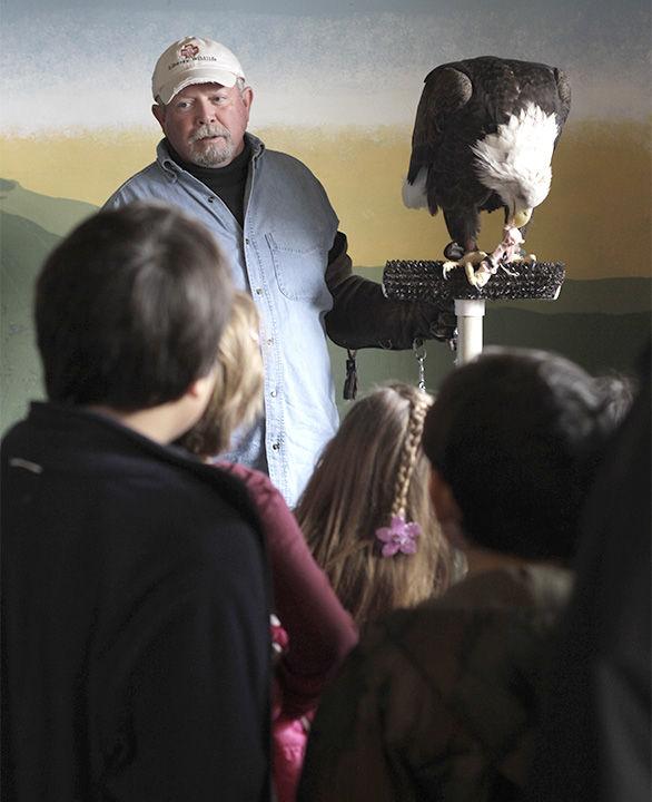Bald Eagle Celebration 1-31-15