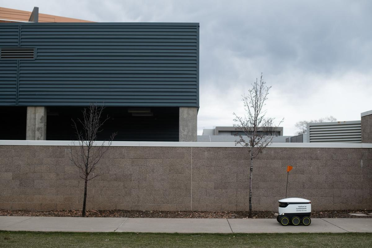 Have you noticed the robots around campus?