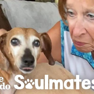 Pup Is Much Less Stubborn On Walks With Grandma Than With Mom | The Dodo Soulmates