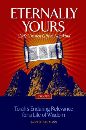 New book explores lessons from Exodus