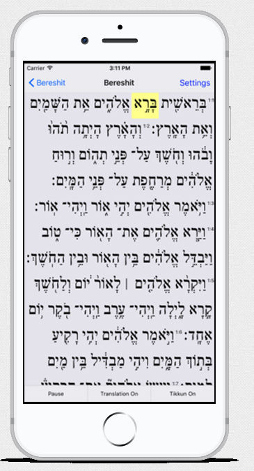 Pocket Torah