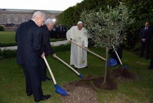 In the Vatican Gardens