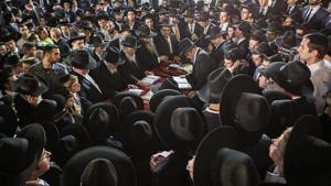 Haredi Population