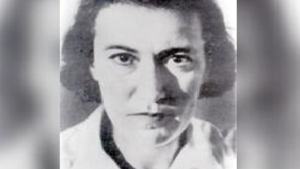 Livka Shefer