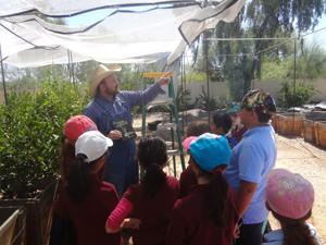 Learning about Sukkot