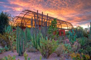Exploring Arizona's treasures, even during summer months