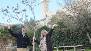 For Tu B'Shevat, Christians raise more than $10,000 to plant trees in Israel