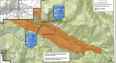 Cache Creek trapping proposal