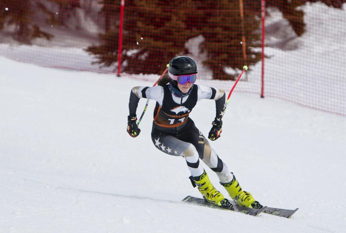 State Alpine Ski Meet