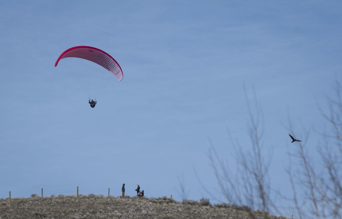 Paraglider flies over Jackson