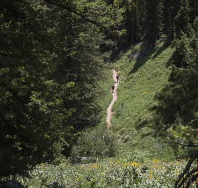 Grand Teton National Park Trails