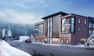 Council picks low-rent project