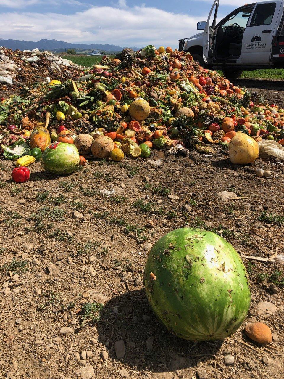 Compost fruit
