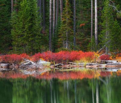Teton Photography Club spotlights local photographers