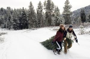 Jackson Hole area's national forest roads closing for winter