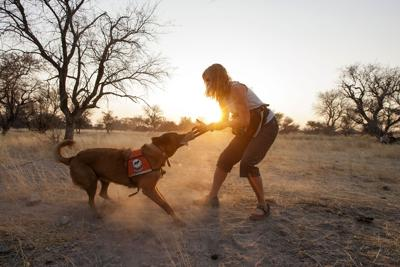 Working Dogs for Conservation