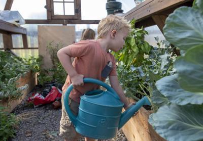 Children's Learning Center greenhouse