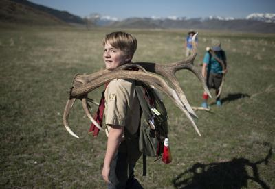 Scouts gather annual antler haul