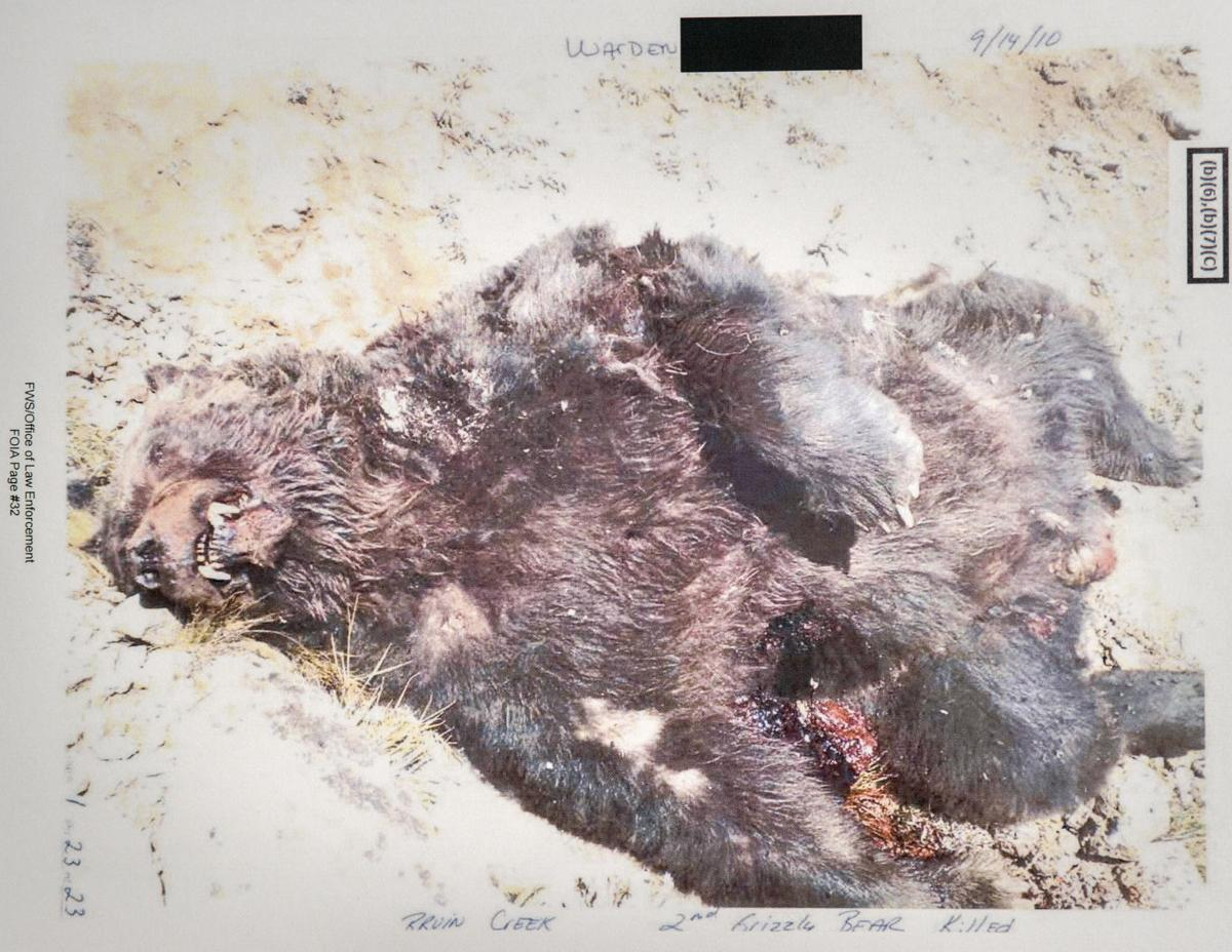 Bear mortality