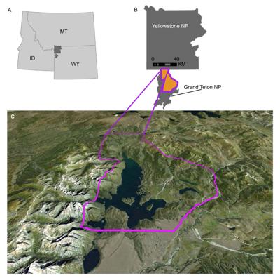 GTNP fire ecology study area
