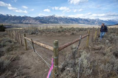 Walton Ranch fence road