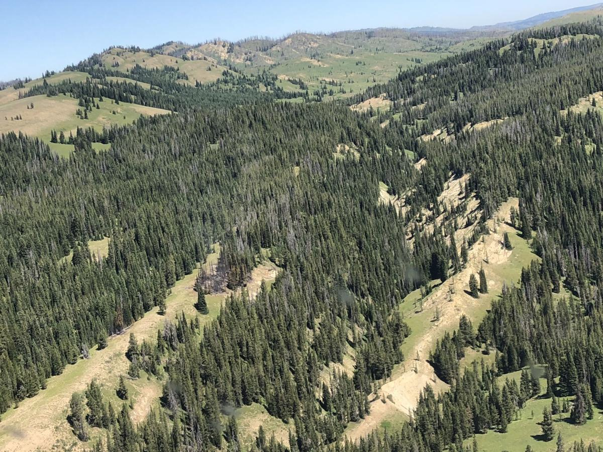 Box Creek Fire shows Enos Lake Fire scar to the north