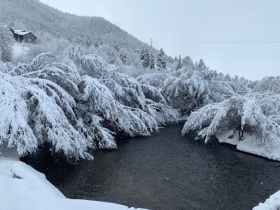 Snowy Flat Creek