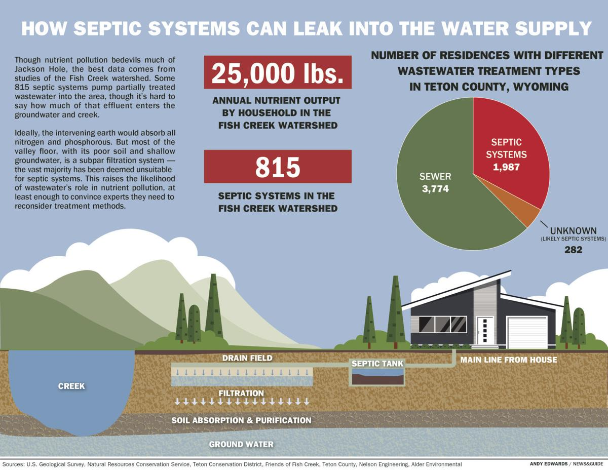 How septic systems can leak into the water supply
