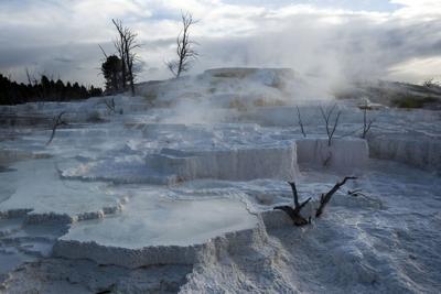 Yellowstone S Winter Season Begins This Weekend Local