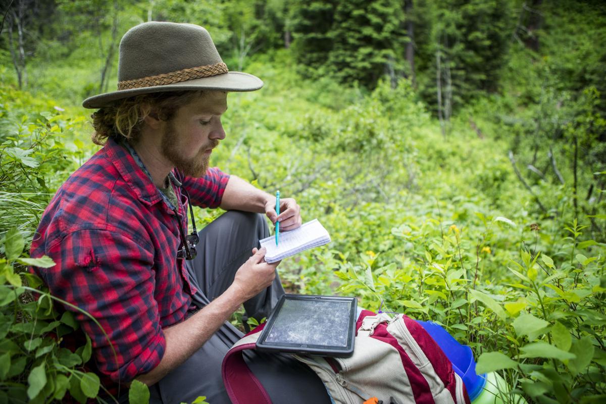Craighead wildflower hike