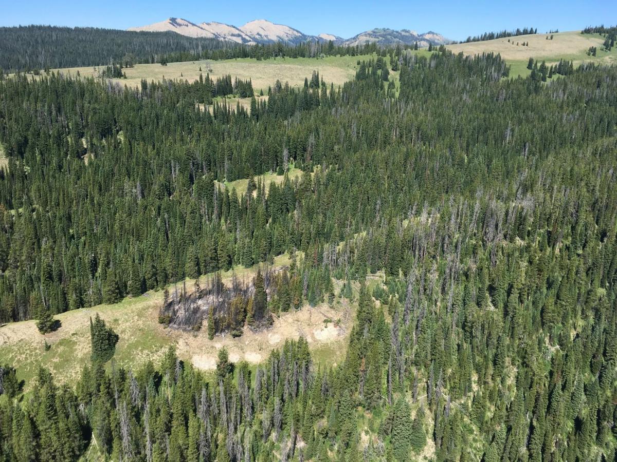 Box Creek Fire smolders in Teton Wilderness
