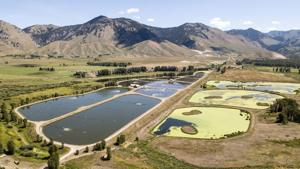 Weed and Pest takes over testing wastewater for COVID-19