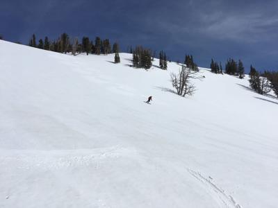 Corn skiing