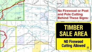 Firewood permits available for the Roosevelt burn area