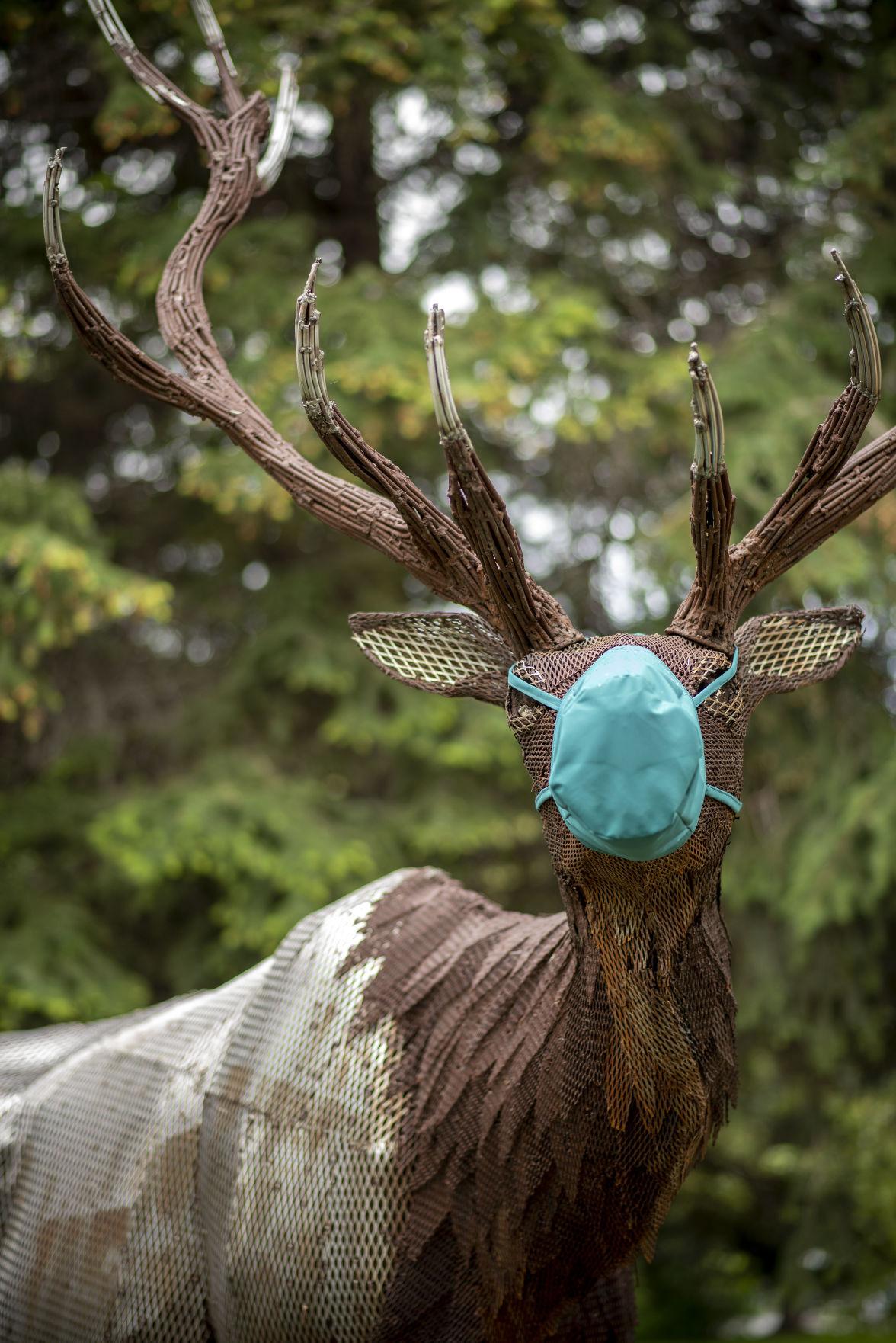 Masked elk sculpture