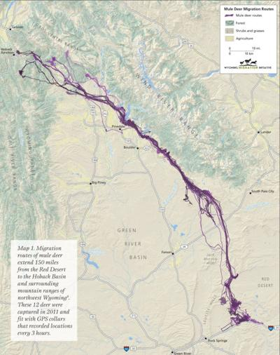 20140625 a muley migration report-6